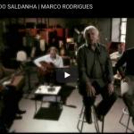 O homem do Saldanha Marco Rodrigues