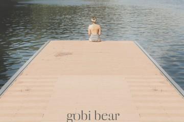 Gobi Bear
