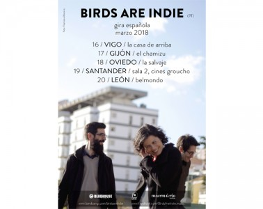 Birds Are Indie