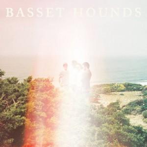 """""""II"""" de Basset Hounds"""