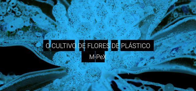 O cultivo de flores de plástico