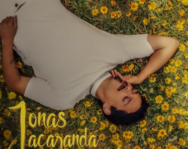 jacarandá Jonas
